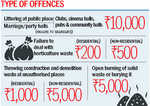 Litterbugs to pay Rs 10K fine
