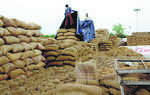 'Rice for poor' finds way to Haryana mills