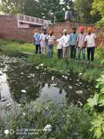 Waterlogging in Bhago Majra makes residents' lives miserable
