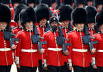 Sikh guardsman tests positive for cocaine, could be expelled