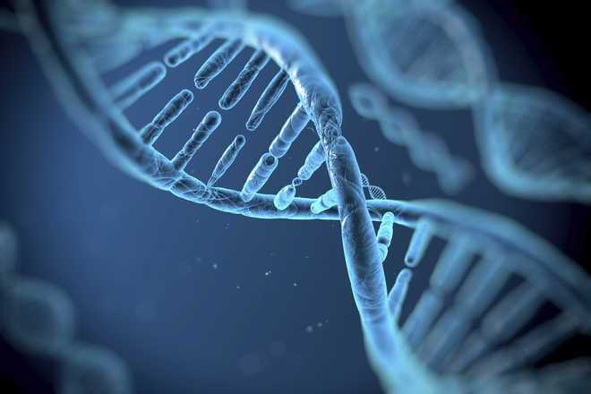 Bill regulating DNA tech use to identify criminals okayed