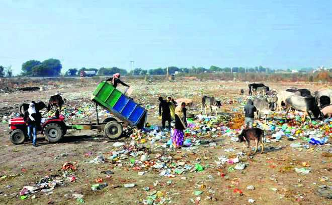 Garbage a headache for Jhajjar