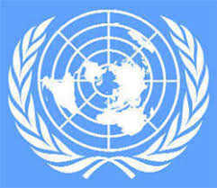 One in three UN employees has been sexually harassed, says survey