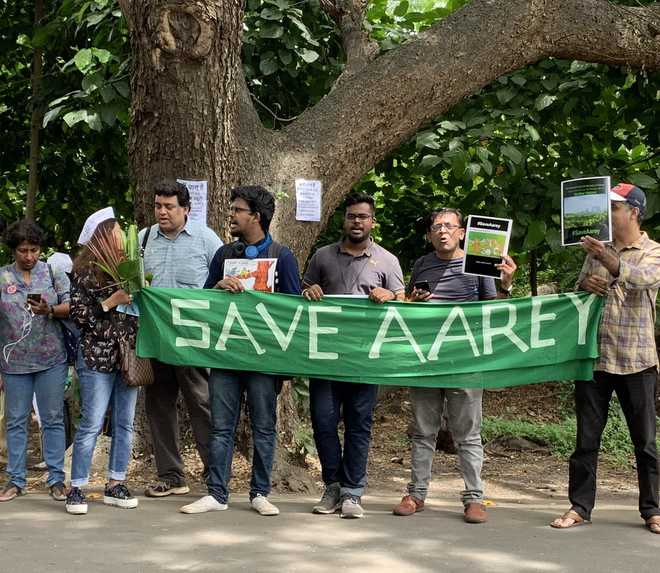 Image result for Bombay High Court refuses to declare Mumbai's Aarey Colony forest area ...