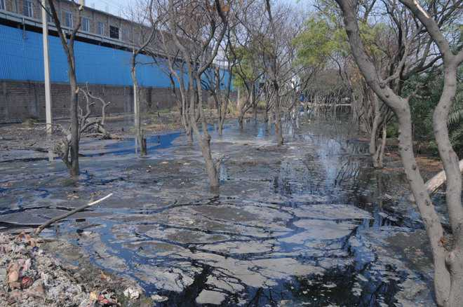 Pollution in Panipat, officials pulled up