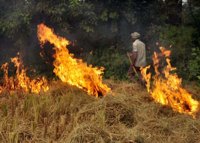 Stubble-burning doubles pollutant levels: Study