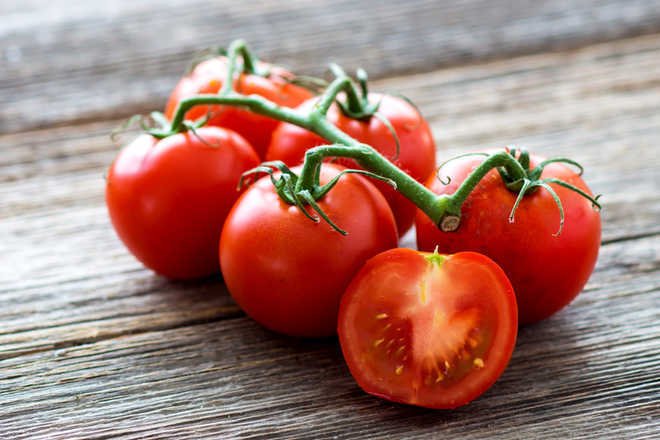 Compound from tomato can boost sperm quality