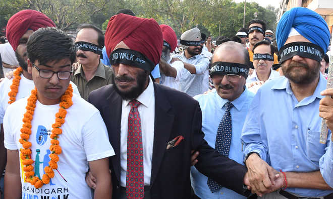 'Blind Walk' shows the way