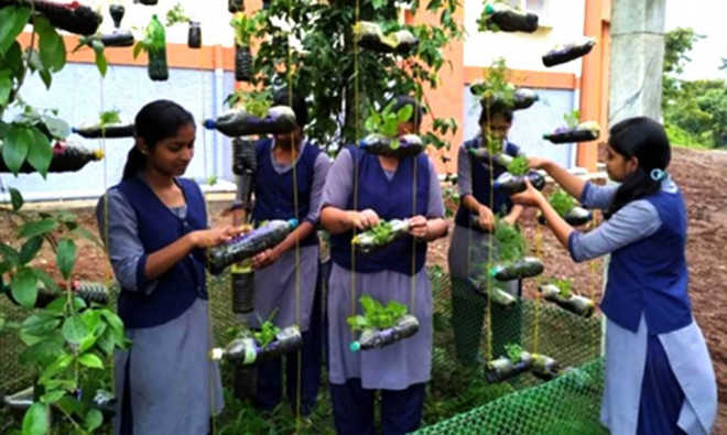 Schools can use discarded items to grow vegetables