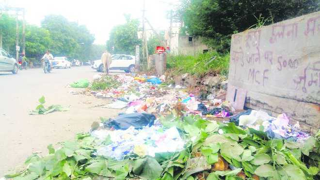 Solid waste outsourcing policy a failure