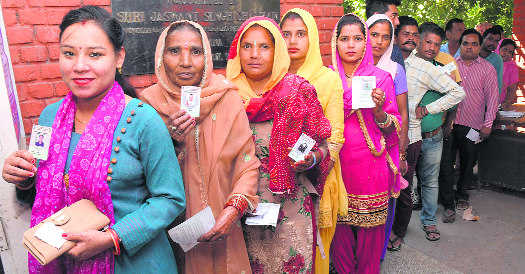 59% voters show up in Panchkula