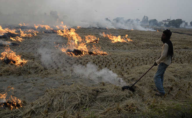 Only 58 stubble burning cases reported, says DC