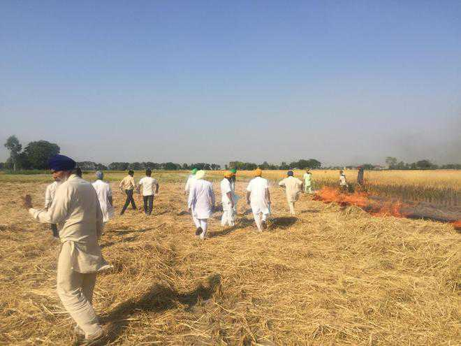 Rs 650-cr machinery fails to douse farm fires