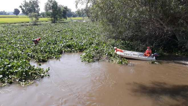 River pollution: NGT panel asks Punjab officials to act or face music