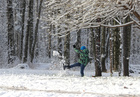 A boy plays in the snow in a park in Saint Petersburg, Russia on October 29, 2019. — Reuters