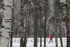A woman walks in a park in Saint Petersburg, Russia on October 29, 2019. — Reuters