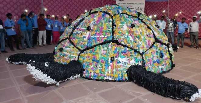 Plastic turtle sends green message