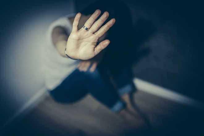 Cops submit plaint against woman in harassment case