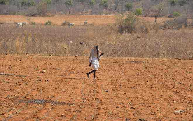 Rain to delay wheat sowing, say experts