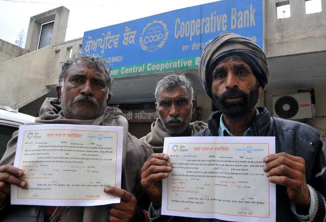 More farmers allege fraud