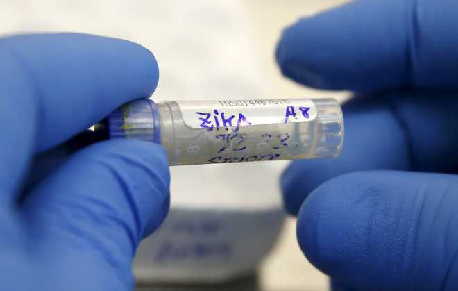 Prior dengue infection may protect against Zika: Study