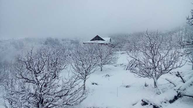 Winter vacations in Shimla schools extended after heavy snow