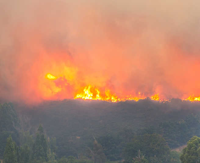 New Zealand wildfire expected to burn for weeks