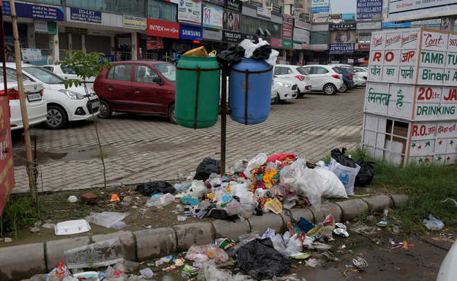 House panel for law to penalise spitting, throwing garbage at public places