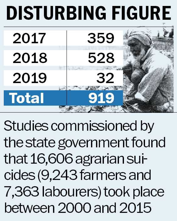 Farm suicides unabated in Punjab, over 900 in 2 years