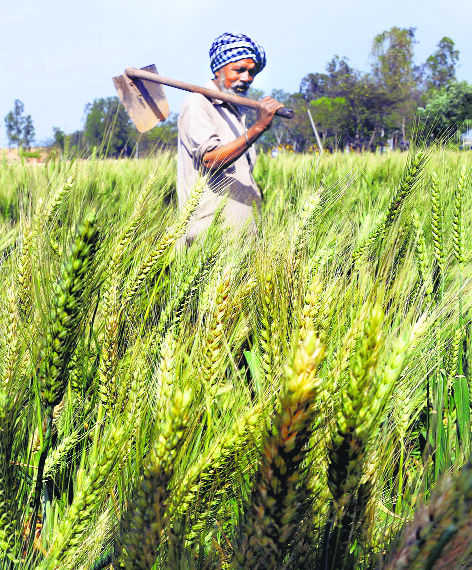 Farmers to get Rs 2,000 under Central scheme