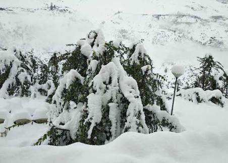 Clear snow, traders urge state admn