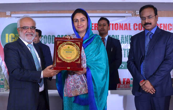 Job opportunities in food processing sector: Harsimrat