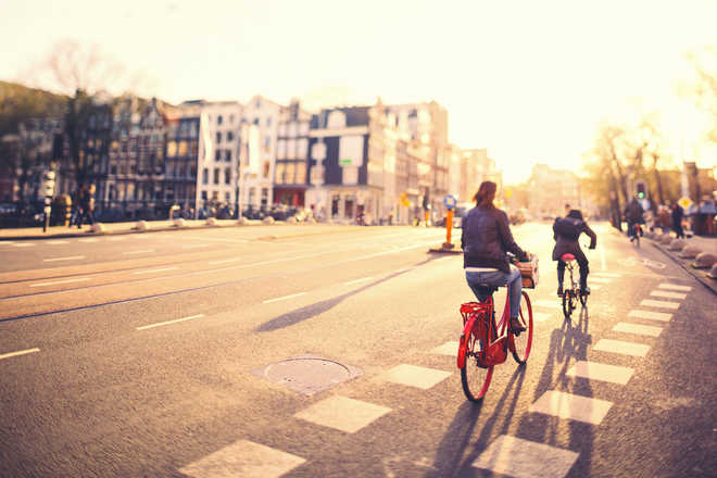 For better cycling culture, pedal Amsterdam way