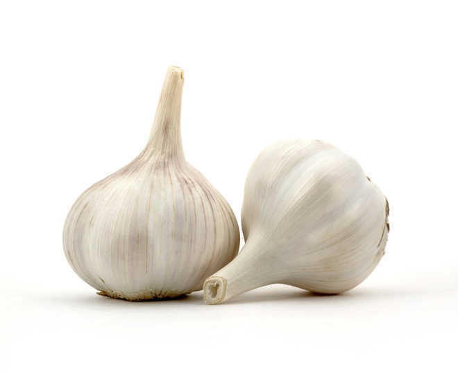 Garlic, onion lower colorectal cancer risk: Study