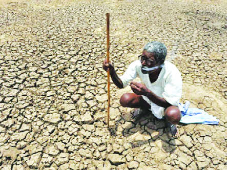 50% of country in grip of drought, say IIT experts