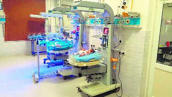 Premature birth a major risk to survival of newborns