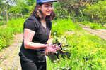 Gurugram's new age farmers