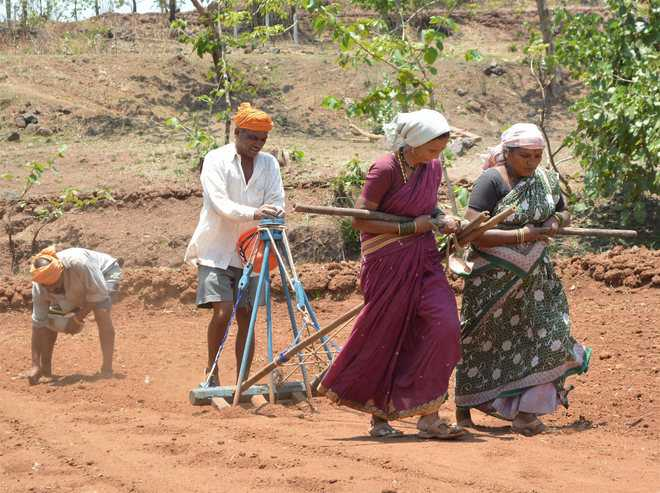 Agrarian crisis takes centrestage in Maharashtra's suicide belt