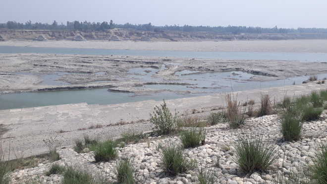 Yamuna may change course this monsoon