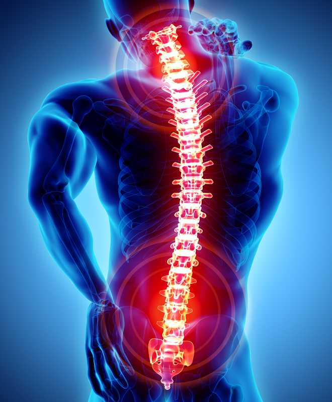 PGI sees its first stitchless endoscopic spine surgery