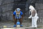 Herthinho (L), the mascot of German first division Bundesliga football club Hertha BSC Berlin, and a person dressed in a polar bear suit place gifts for polar bear cub Hertha (not in picture) during an event where the baby bear was given her name on April 2, 2019 at the Tierpark zoo in Berlin. — AFP