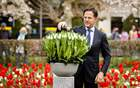 Netherlands Prime Minister Mark Rutte christens and names a new tulip in the Keukenhof park in Lisse, on April 17, 2019. — AFP