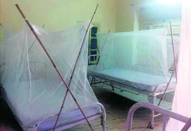 Health Dept sets up separate wards for dengue patients in hospitals