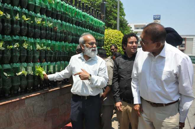 Now, vertical garden comes up at DMCH