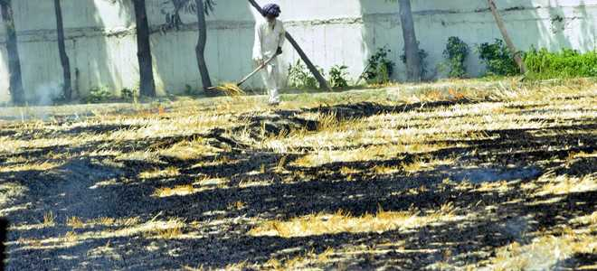 Polling nears, parties cold to stubble-burning issue