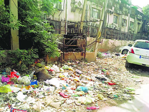 Garbage disposal a chronic problem in Faridabad