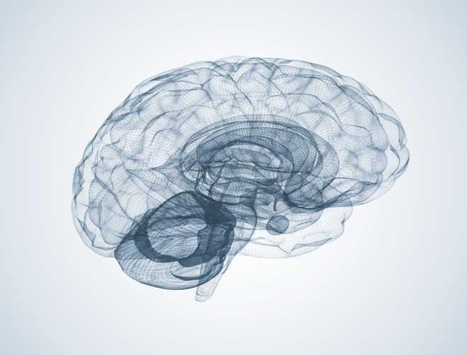 Brain zapping can help retrieve forgotten memories