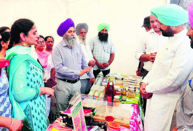 Process, market your products, farmers told
