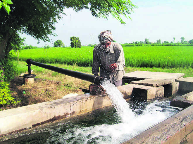 Groundwater scarce, 2 districts in dark zone