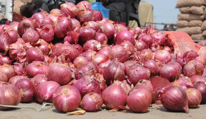 Govt removes export incentives for onion